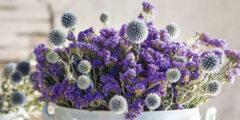 طريقة تجفيف الزهور